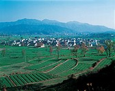 the folk houses and farmland in China