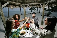 Friends toasting drinks at dinner on beach
