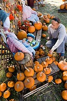 Father with his son by scarecrow amid pumpkins