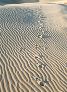 Death Valley,California,USA
