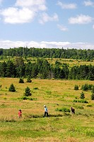 Hikers on a trail at Ft. Amherst near Charlottetown on Prince Edward Island, Canada.