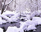 Snow Oirase Mountain stream Ravine Towadako Aomori Japan River