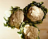 cauliflowers
