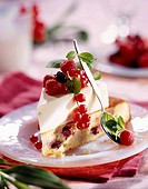 white chocolate sponge cake with summer fruit