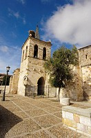 San Cipriano church (11th century). Zamora. Castilla y Leon. Spain