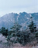 Mt. Jirisan National Park,Jeonnam,Korea
