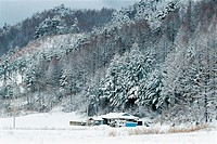 Winter In Imgye,Gangwon,Korea