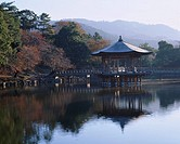Morning Nara Park Ukimido Nara Japan
