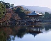 Morning Nara Park Ukimido Nara Japan