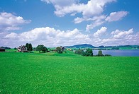 Limmat river,Swiss
