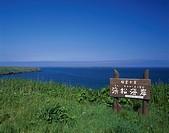 Hamamatsu seashore Yururi Moruri island Nemuro Hokkaido Japan Blue sky Sea Plant