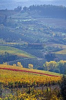 The famous Chianti Classico wine region, Tuscany