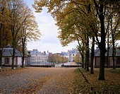 Autumn of the Fontainebleau castle Paris suburbs France Sky Castle Tree Red leaves Fallen leaves