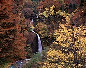 Seven waterfalls, Waterfall, Asahi village, Yamagata, Japan