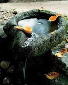 Mineral Water,Ssanggyesa Temple,Chungnam,Korea