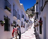 White row of houses, Scenery of donkey, Mijas, Costa del Sol, Spain, sky, mountain, tree, Way, Slope, Stone Pavement, Row of Houses, house, flower, Do...