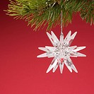 Still life of star_shaped white Christmas ornament hanging from pine branch.