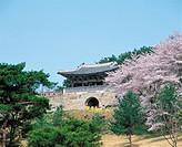 Sangdangsanseong Fortress,Chungbuk,Korea