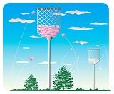 Ball and Basket Game, Tamaire