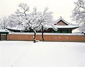 Gyeongbokgung palace,Seoul,Korea