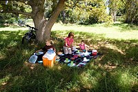 Family of three having picnic beneath tree