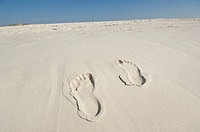 Footprints in the sand on a beach in Gulf Shores, AL.
