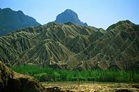 Arid Kara Tagh Mountains above poplar trees near Taklimakan Desert.