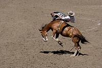 A rodeo rider is thrown from a bucking horse.