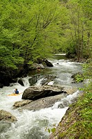 Kayaking on Little River, Great Smoky Mountains National Park, TN