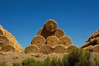 Hay in Eastern Oregon, USA