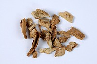 Chinese Wolfberry Root_bark, Lycii Cortex, cut out, object