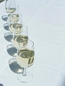 Row of wineglasses full of white wine on table,elevated view