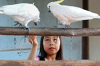 A girl feeding two birds, Malaysia