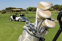 Golf clubs in a golf bag