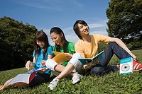 Friends studying in park