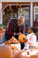 A man and his granddaughter choosing pumpkins