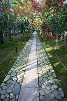 Stone pathway in park, autumn