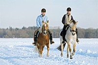 Two girls riding at winter on back of Haflinger horse and Norwegian horse