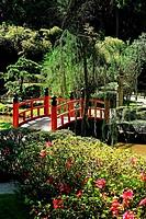 Bridge, japanese garden, Jardim Botânico, Rio de Janeiro, Brazil