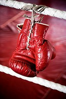 Close up of boxing gloves on the ropes of a boxing ring