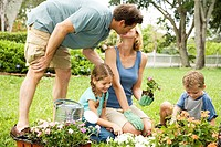 family gardening father kissing mother