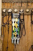 Rosettes and bridles hanging on hooks