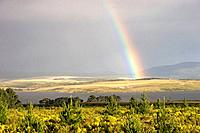 Bright rainbow over coastal farmland mountains in background, South Africa