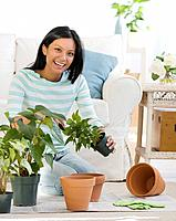 Pacific Islander woman re_potting plants