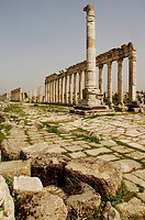 Syria _ Qal´at al_Mudiq. Apamea. Remains of Roman temples