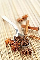 Still life: Spice and Herb. Star anise, cloves and cinnamon sticks