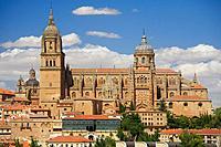 Cathedral, Salamanca. Castilla-Leon, Spain