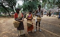 Two women and a man making coir ropes, Tamil Nadu, India