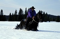 Gol, horse back riding in the snow