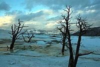 Mammoth Hot Springs, USA, America, United States, North America, Yellowstone, national park, Wyoming, landscape, water